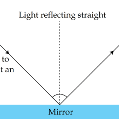 Reflection Ray Diagram Ks3 Anatomy Of The Digestive System Law Lesson For Kids Study Com It Bounces Off From Midline Smooth Surface Reflecting On Opposite Side As Demonstrated In Image Below
