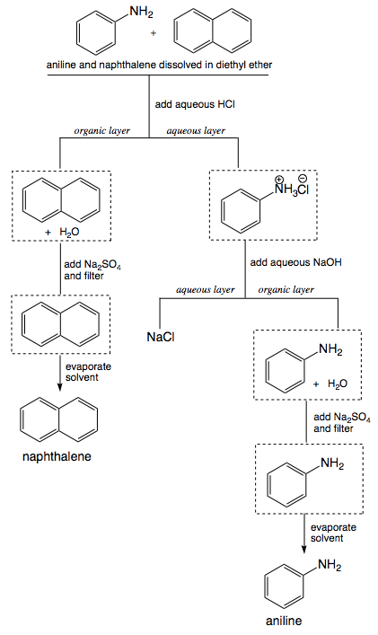 Propose a procedure to separate aniline from naphthalene