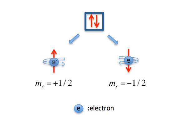 Spin Quantum Number: Definition & Example Video with