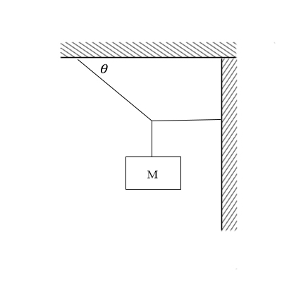 Find the tension in the two cords shown in the figure