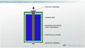 Cathode And Anode Half Cell Reactions Video & Lesson Transcript