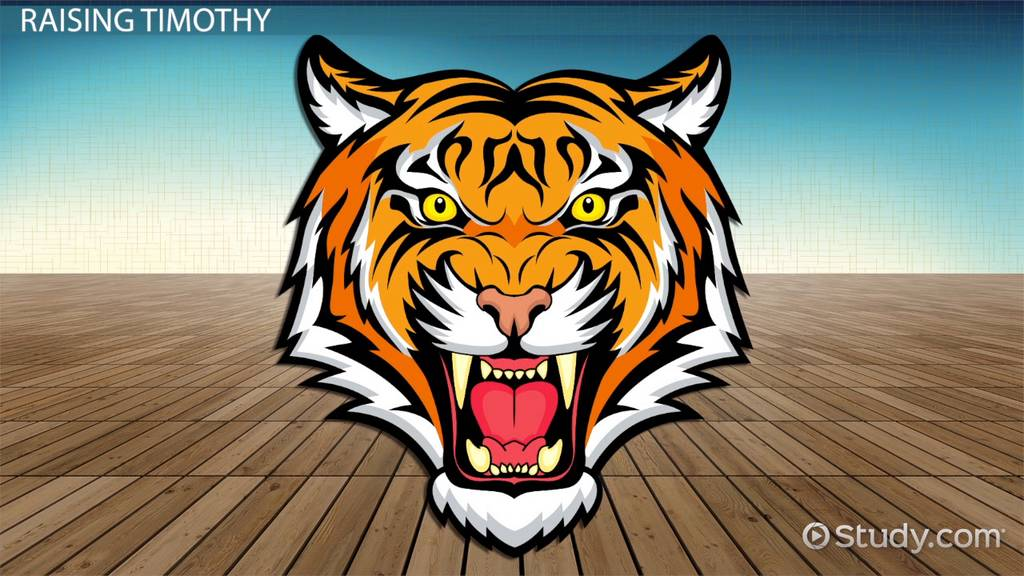 A Tiger In The House Summary Video & Lesson Transcript
