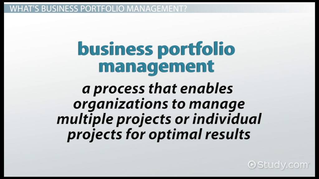 Business Portfolio Management Definition & Example