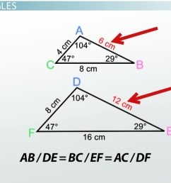 AA Similarity Postulate \u0026 Theorem - Video \u0026 Lesson Transcript   Study.com [ 714 x 1276 Pixel ]