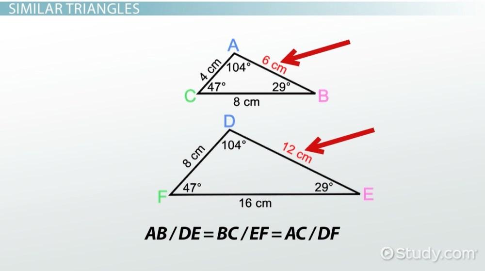 medium resolution of AA Similarity Postulate \u0026 Theorem - Video \u0026 Lesson Transcript   Study.com