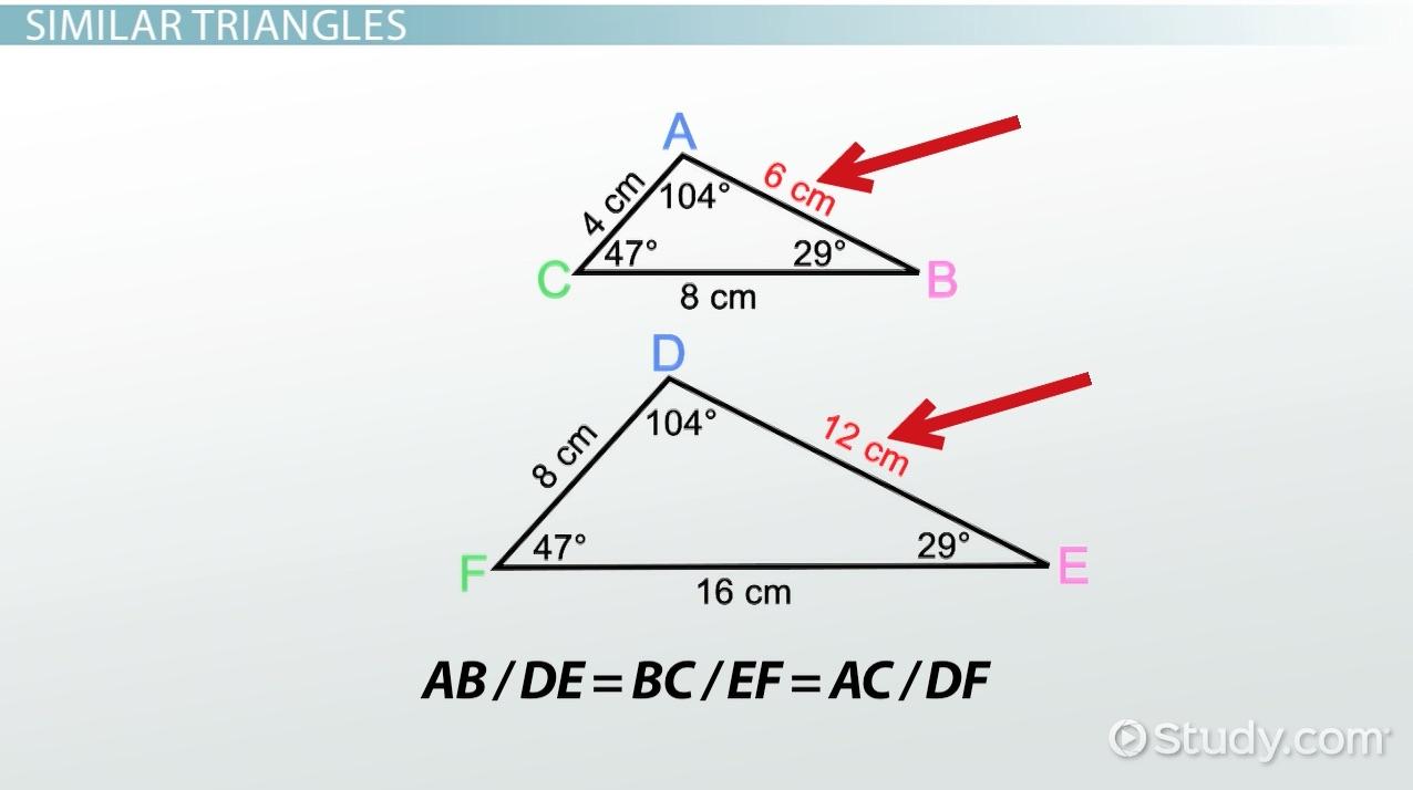 hight resolution of AA Similarity Postulate \u0026 Theorem - Video \u0026 Lesson Transcript   Study.com