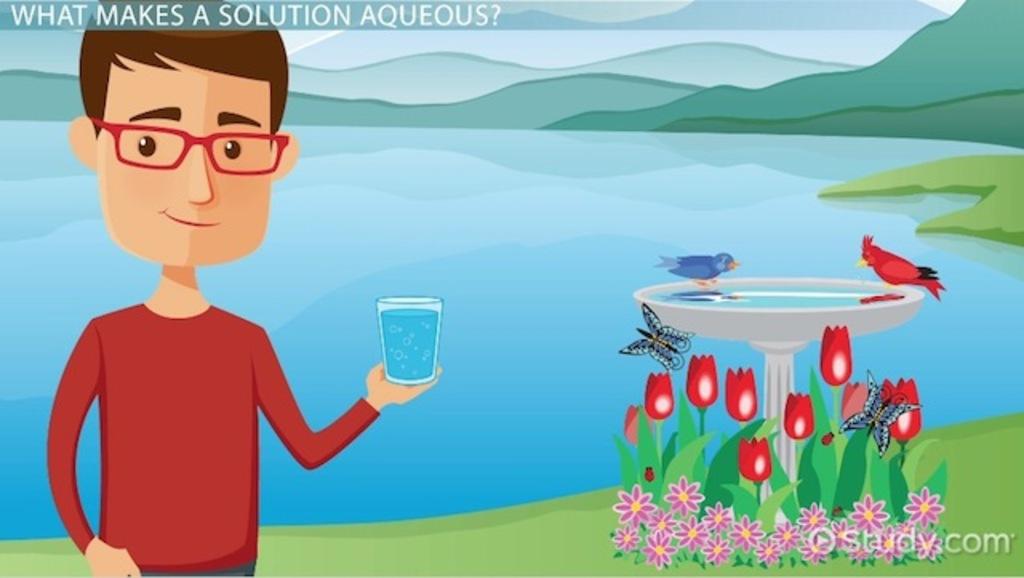 Aqueous Solution Definition Reaction & Example Video