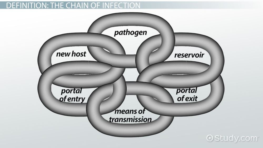 medium resolution of chain of infection definition example