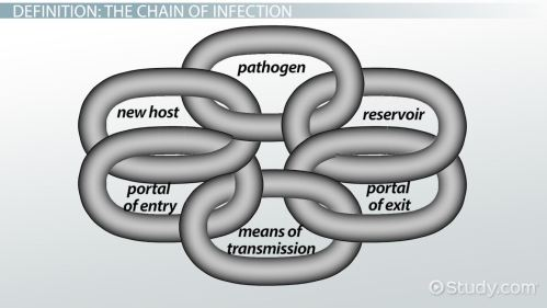 small resolution of chain of infection definition example