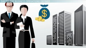 DayToDay Operations of a Business: Definition
