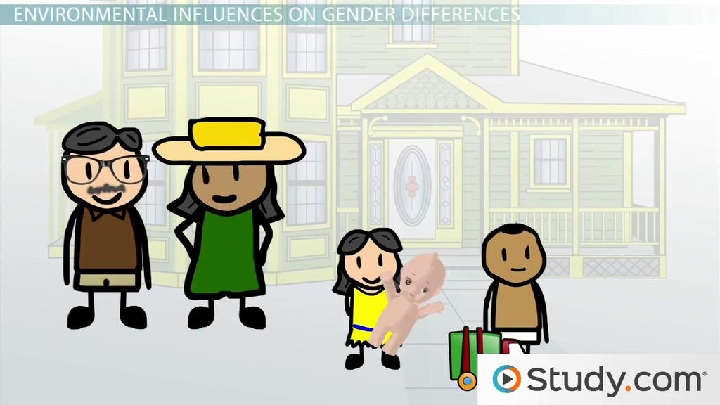 Gender Differences The Nature Versus Nurture Debate
