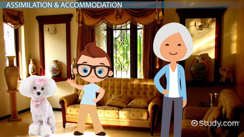Assimilation & Accommodation In Psychology Definition