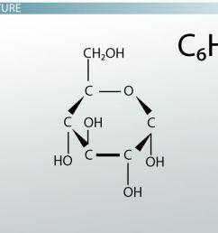 maltose definition structure function video lesson transcript study com [ 1280 x 720 Pixel ]