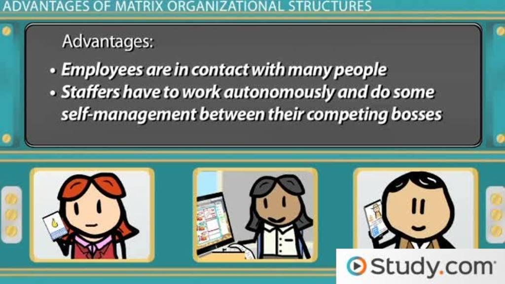 Matrix Organizational Structure Advantages Disadvantages