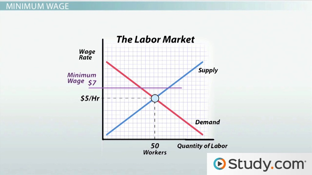 hr diagram worksheet middle school vw golf mk4 parts minimum wage and its effects on employment video lesson