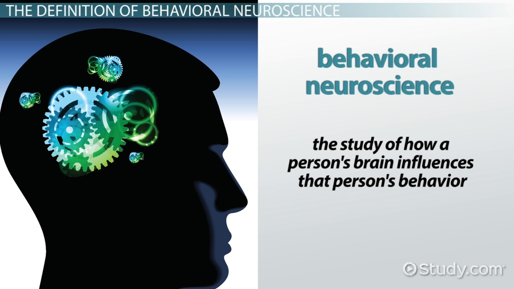 What Is Behavioral Neuroscience? Video & Lesson