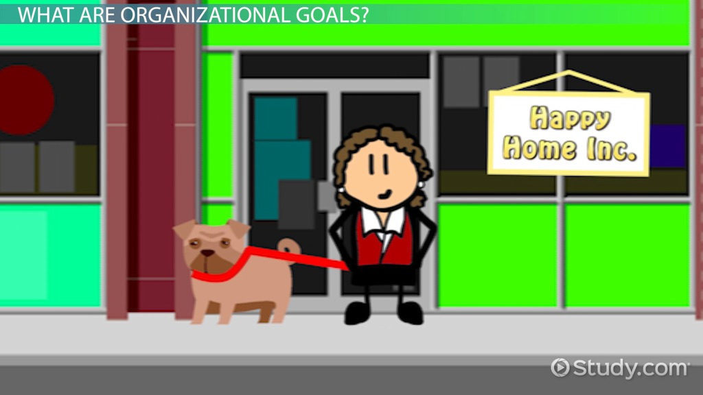 What Are Organizational Goals? Definition Types