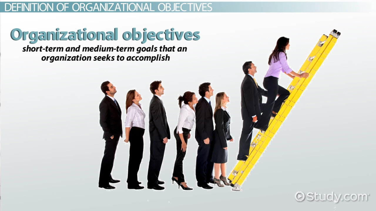Organizational Objectives Definition & Examples Video