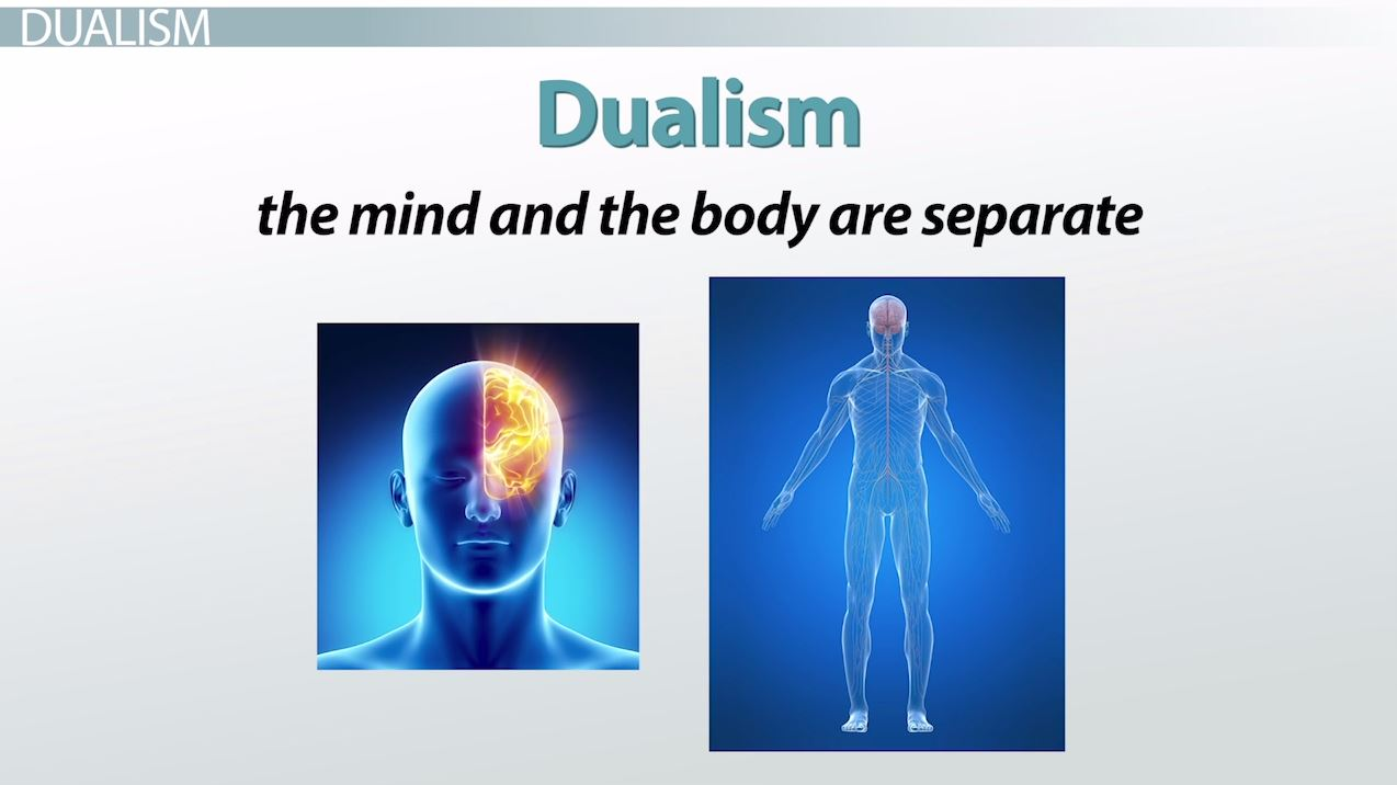 The Self As The Brain According To Paul Churchland Video