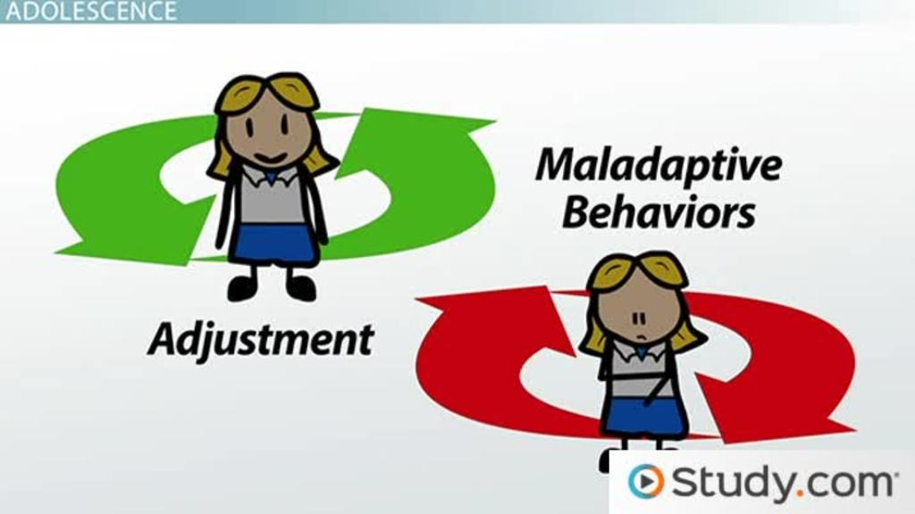Problems With Adjustment In Adolescence Video & Lesson