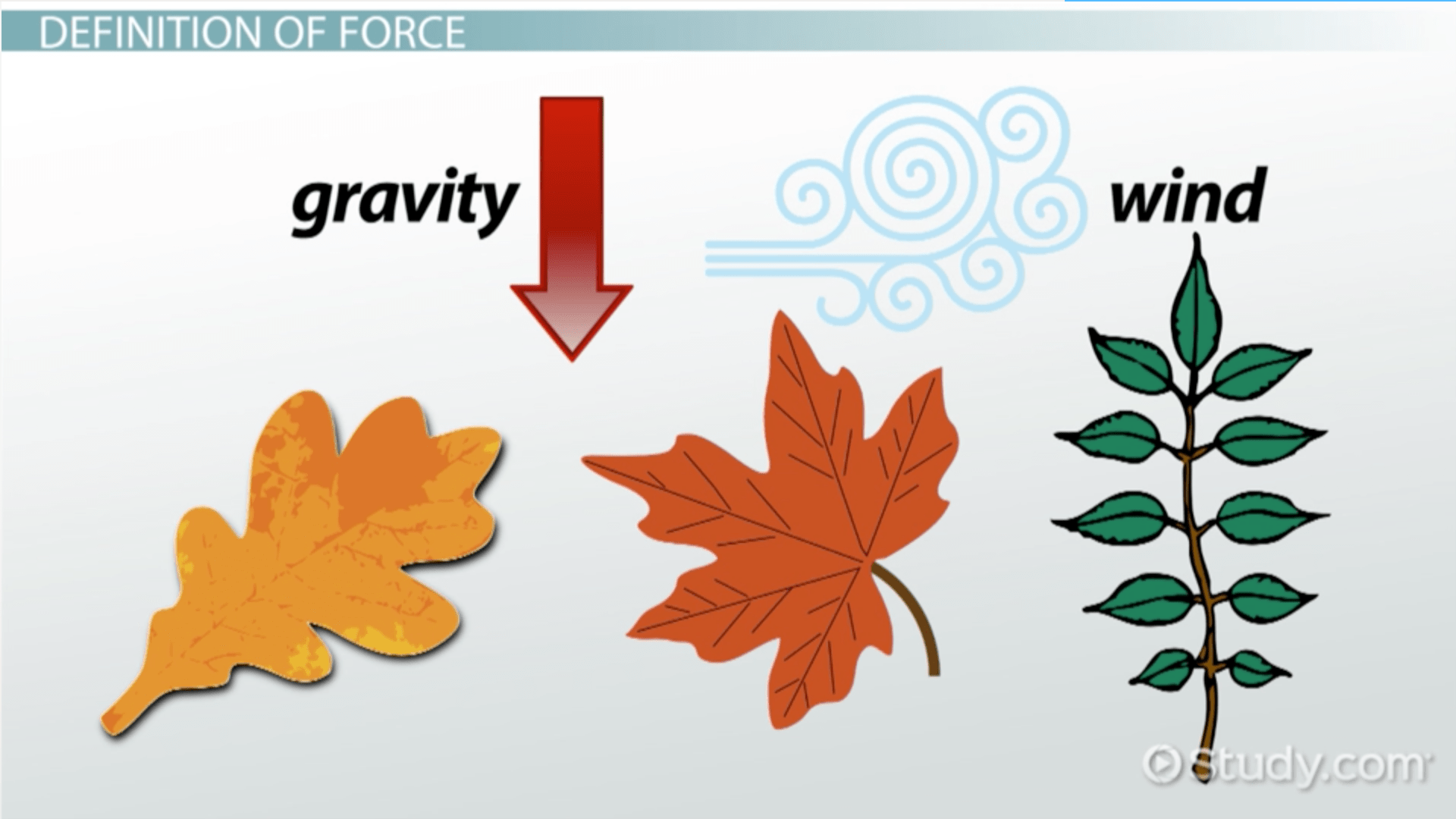 Force In Physics Definition Amp Examples