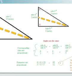 Proportional Relationships in Triangles - Geometry Class (Video)   Study.com [ 701 x 1250 Pixel ]
