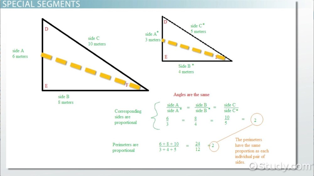 medium resolution of Proportional Relationships in Triangles - Geometry Class (Video)   Study.com