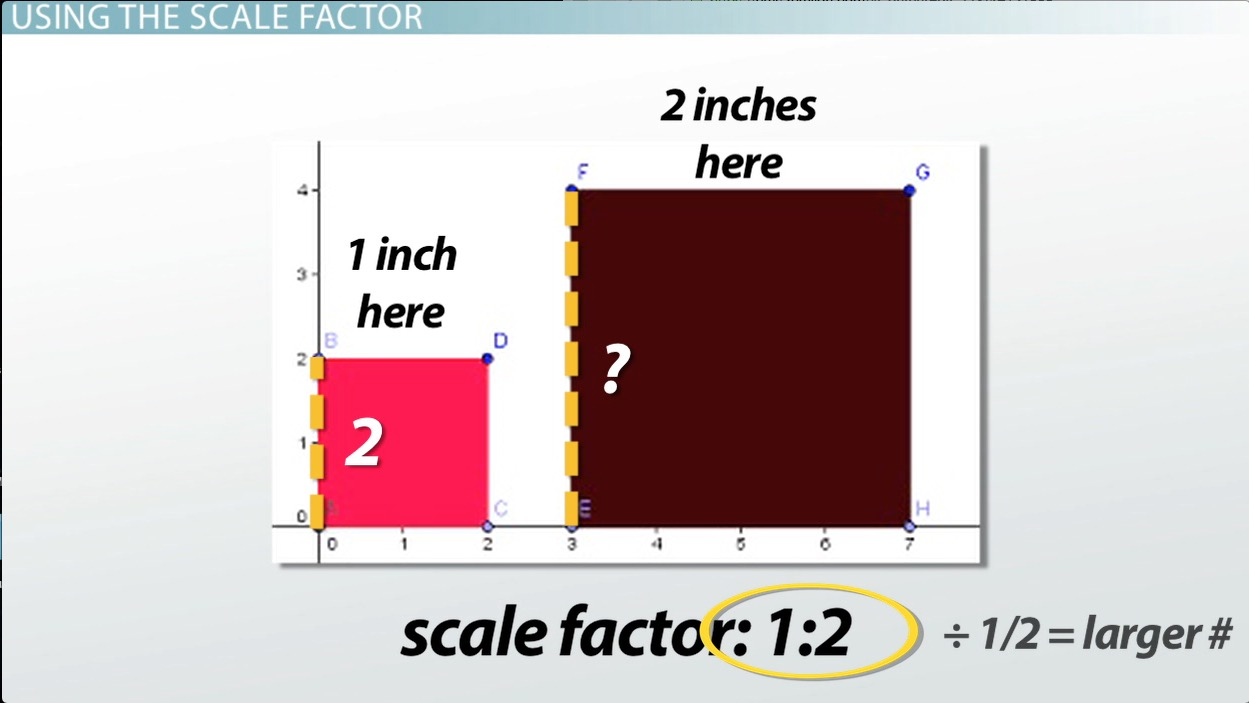 hight resolution of What is a Scale Factor? - Definition