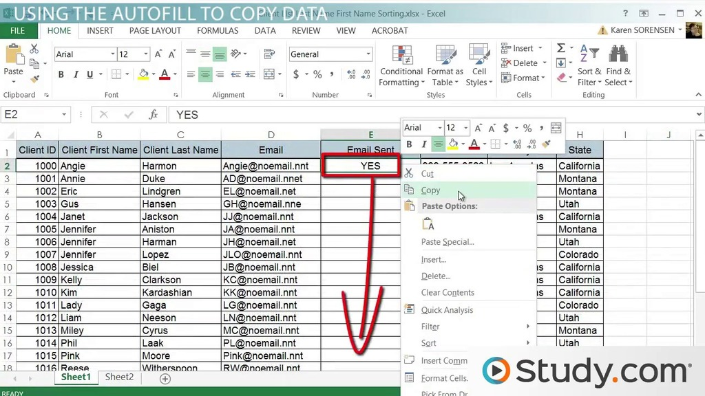 Using the AutoFill Tool in Excel  Video  Lesson Transcript  Studycom