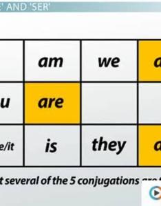 Ser definition and present tense conjugation video  lesson transcript study also rh