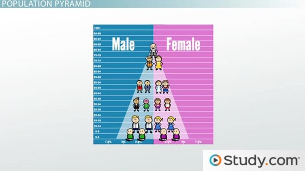 The Population Pyramid Video & Lesson Transcript Study Com