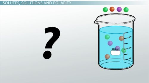 small resolution of Unsaturated Solution: Definition \u0026 Examples - Chemistry Class (Video)    Study.com