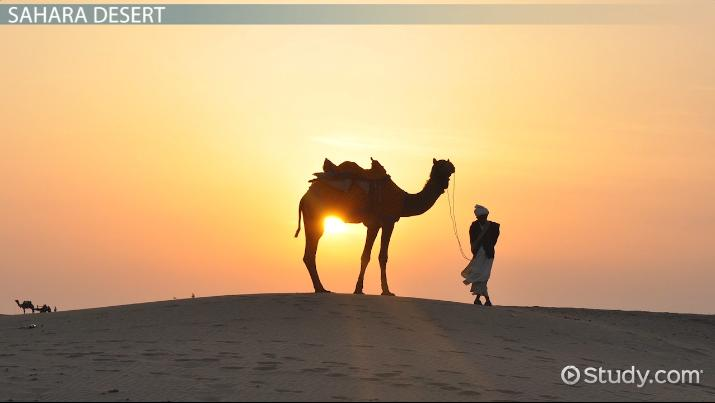 Desert Biotic and Abiotic Factors  Video  Lesson
