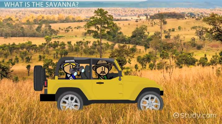 threats to the savanna