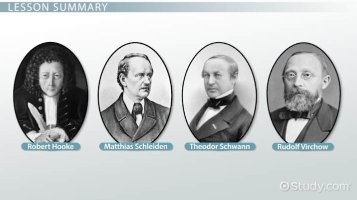Major Contributors To Cell Theory Video Amp Lesson