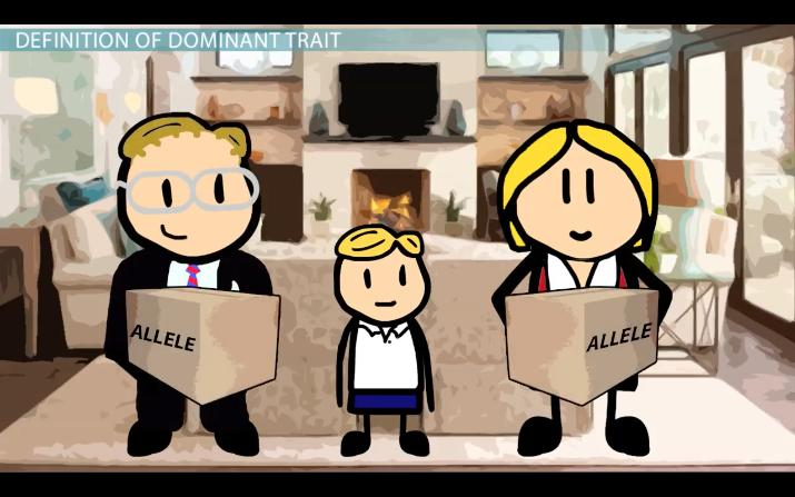Dominant Trait Definition Amp Example Video Amp Lesson