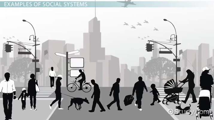 Social Systems Definition & Theory Video & Lesson