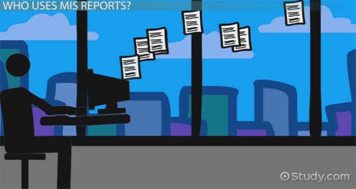 MIS Reports Types Meaning  Example  Video  Lesson Transcript  Studycom
