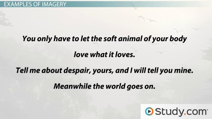 Imagery In Poetry Definition Examples & Types Video & Lesson