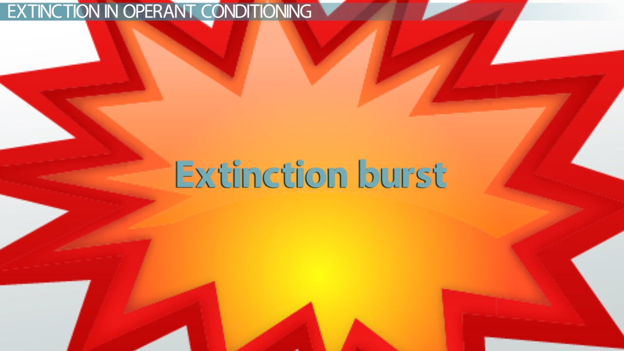 What is Extinction in Conditioning  Definition  Explanation  Video  Lesson Transcript