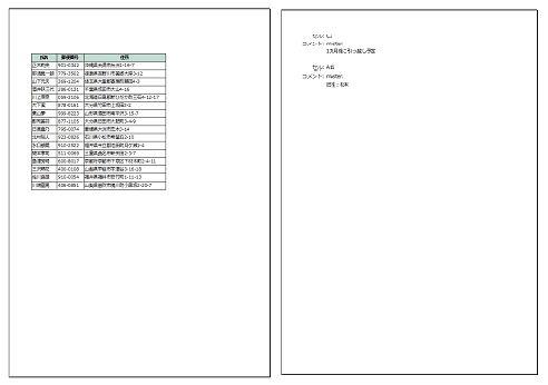 excel-comments-print04