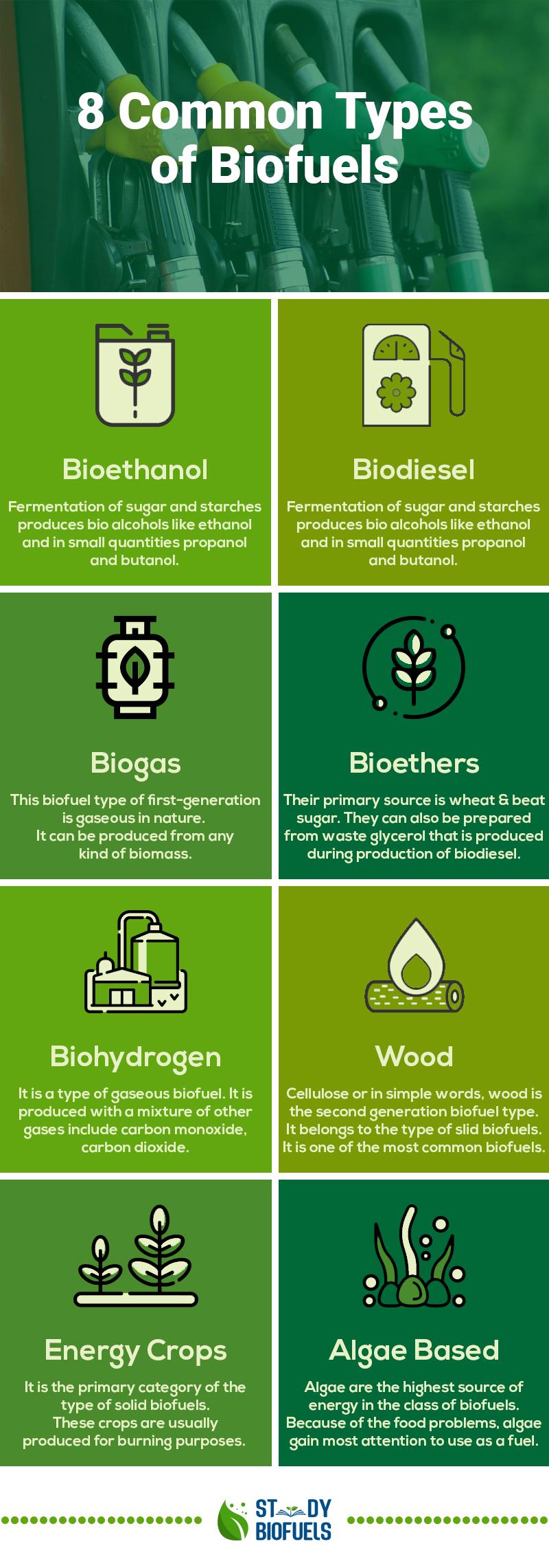 types of biofuels