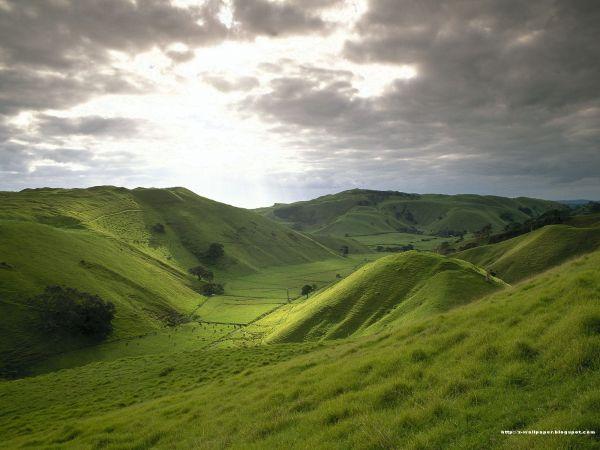 landscapes studybooks page