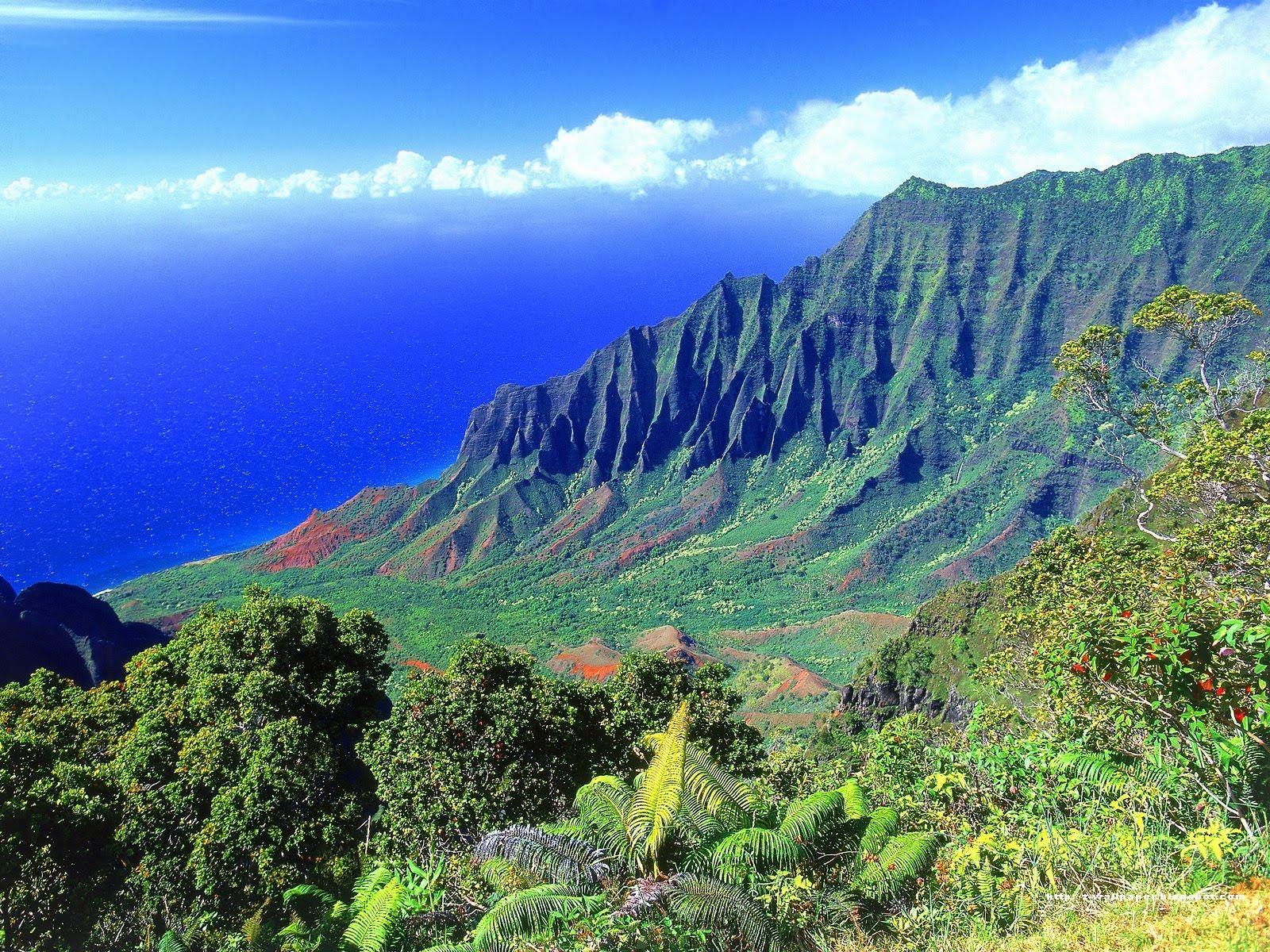 Rainbow Falls Hawaii Wallpaper Hawaii Studybooks