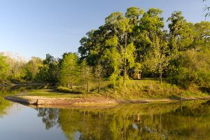 Brazos State Park