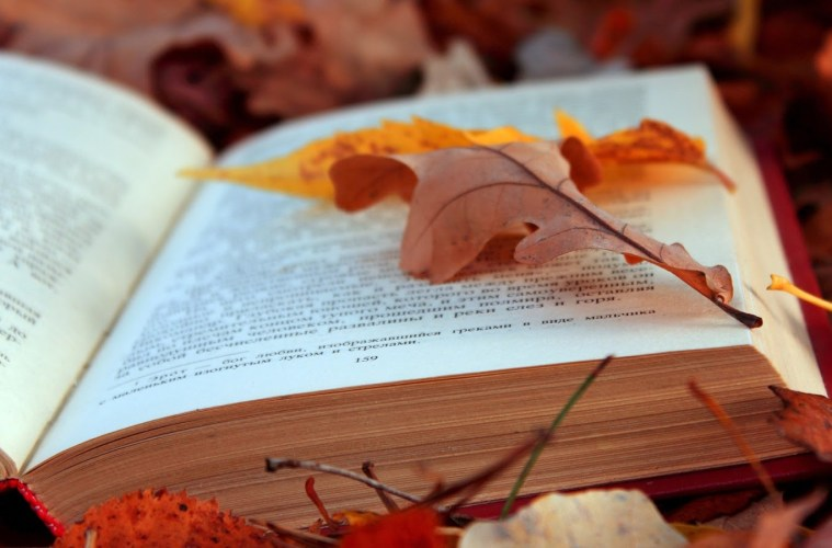 5 Books Best Enjoyed in Fall
