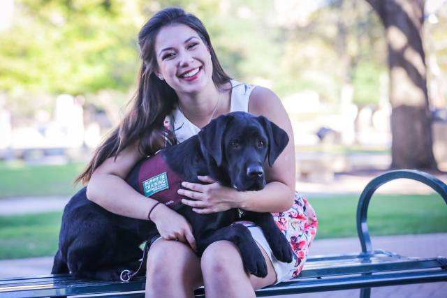 Texas A&M Junior Trains Support Dogs While in School