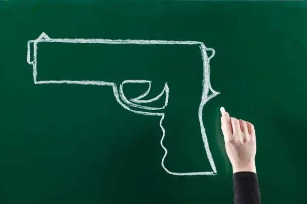 Should Universities Offer Firearms Studies Courses?