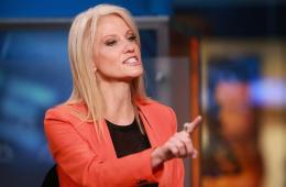 Kellyanne Conway Is a Real Life Megamind