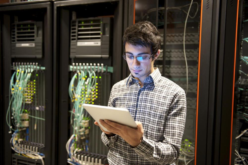 Why Careers in Information Technology Continue to Grow